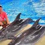 Незлобин в дельфинарии