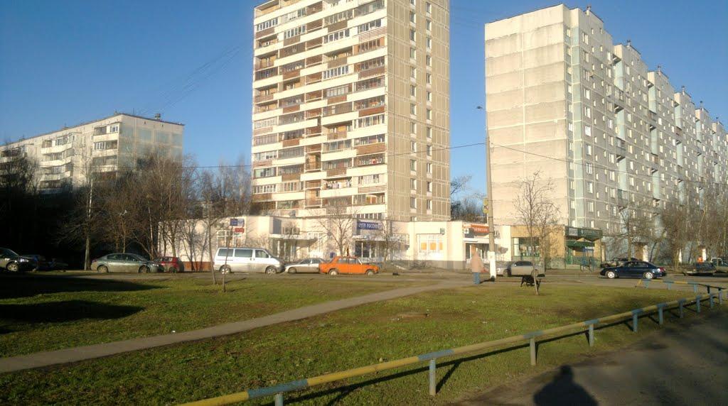 Кошкин дом и столичная квартира Александра Олешко