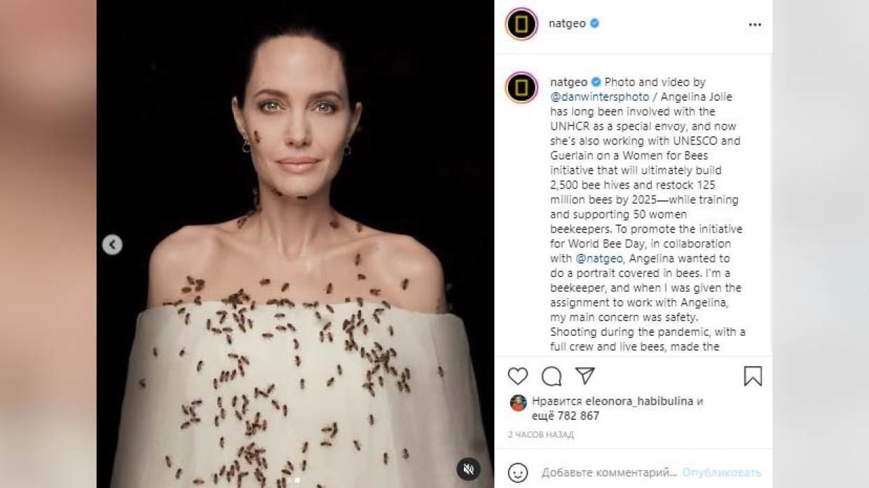 Анджелина Джоли снялась в странной фотосессии с пчелами